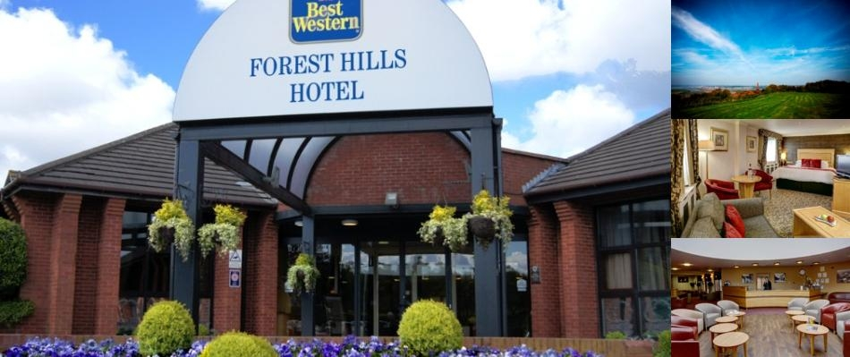 Best Western Forest Hills Hotel photo collage