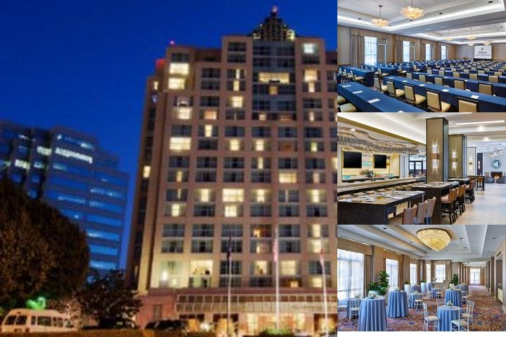 Hilton Glendale photo collage