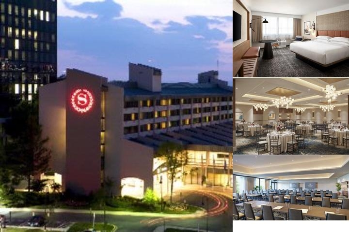 Sheraton Reston photo collage