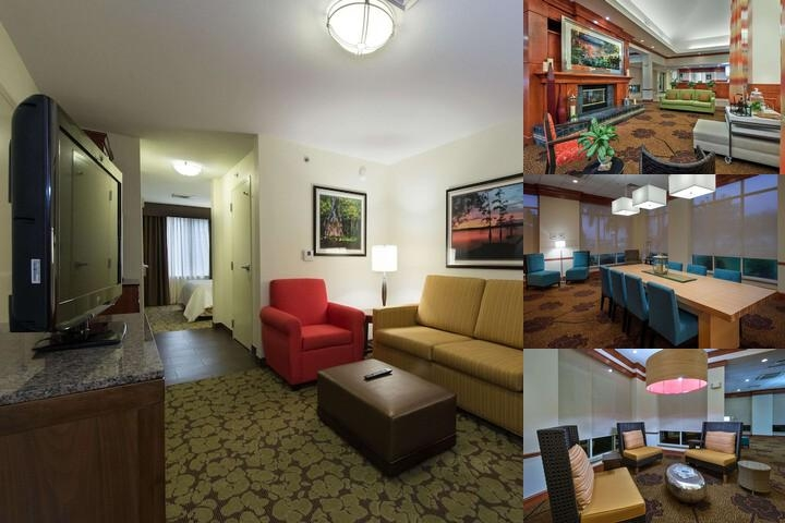 Hilton Garden Inn Lafayette / Cajundome photo collage