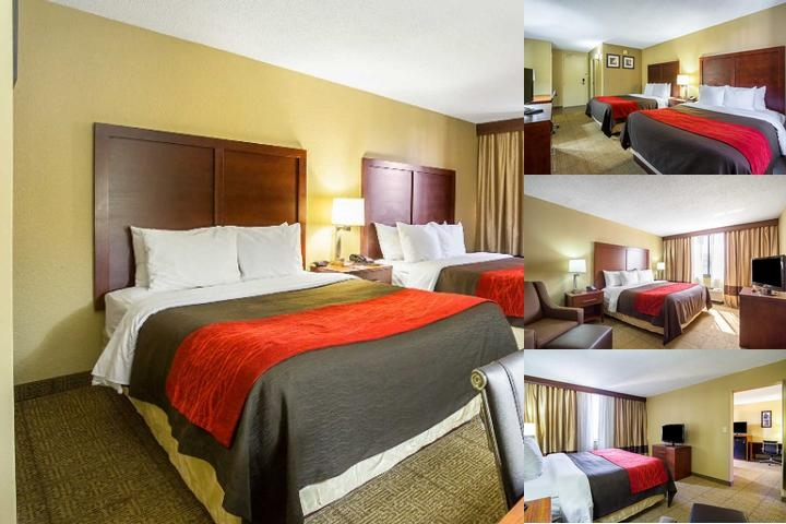 Comfort Inn Downtown Cleveland photo collage