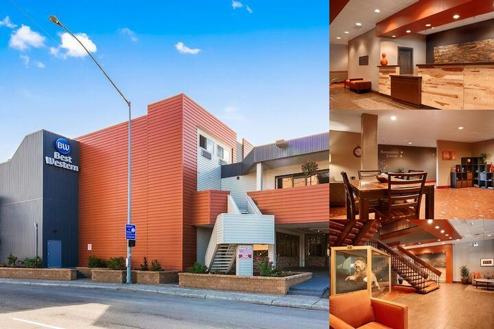 Best Western Golden Lion Hotel photo collage