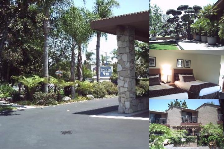 Best Western Pine Tree Motel photo collage