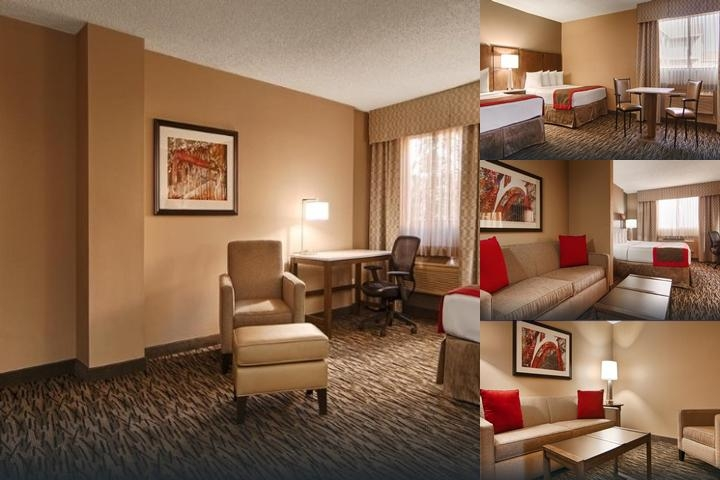 Best Western Los Alamitos Inn & Suites photo collage