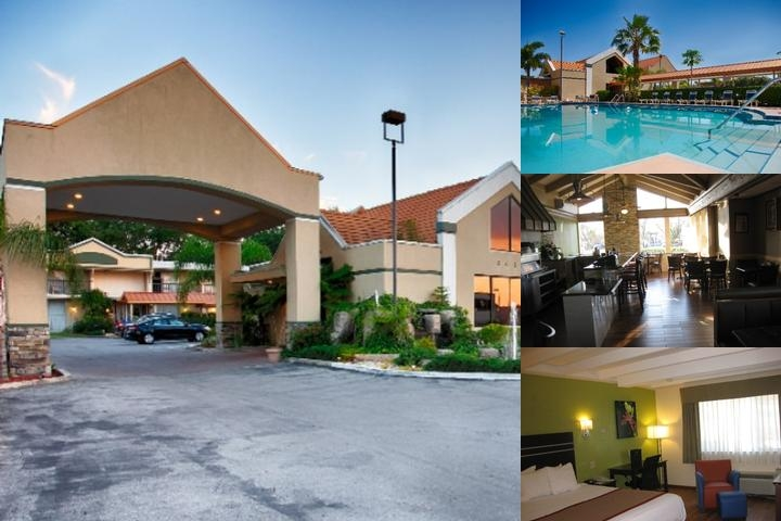 Best Western Orlando West photo collage