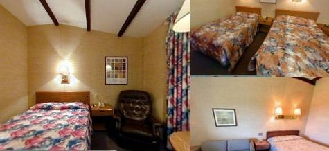 The Black Horse Lodge & Suites photo collage