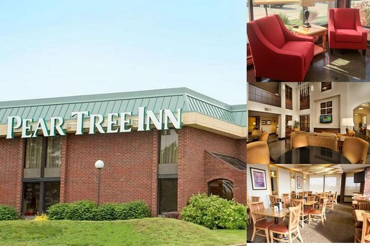 Pear Tree Inn Rolla photo collage