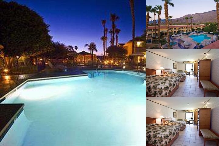 The Garden Vista Hotel Palm Springs photo collage