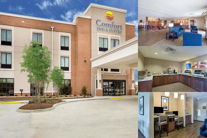 Comfort Inn & Suites Zachary photo collage