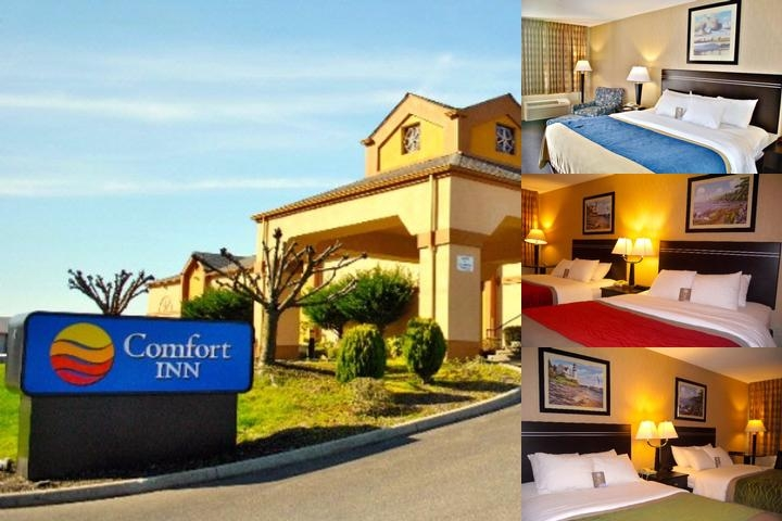 Comfort Inn on the Bay photo collage