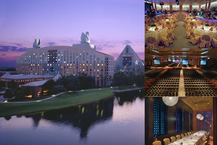 Walt Disney World Swan & Dolphin Resort photo collage