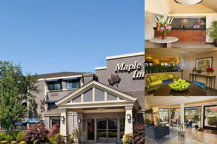 Maple Tree Inn photo collage