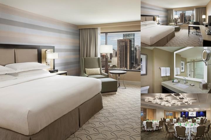 Hilton Toronto photo collage