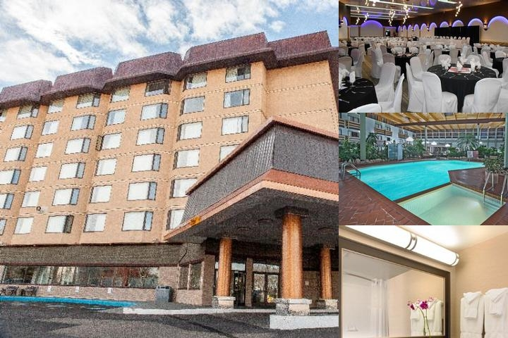 Baymont Inn & Suites Conference Centre Red Deer photo collage