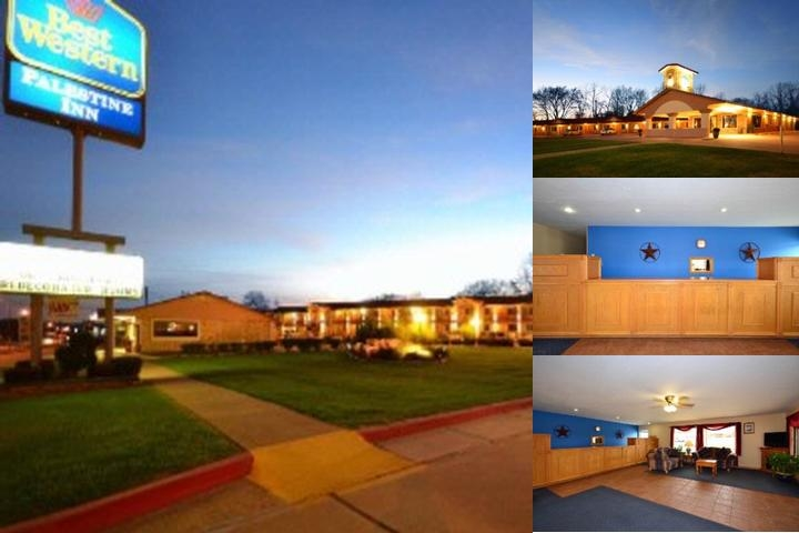 Best Western Palestine Inn photo collage