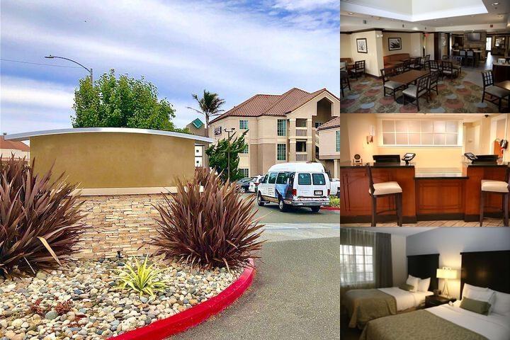 Staybridge Suites San Francisco Airport Bruno Ca 1350 Huntington 94066