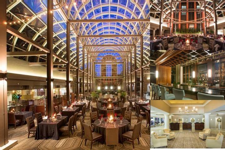 Sheraton Orlando North Hotel Photo Collage