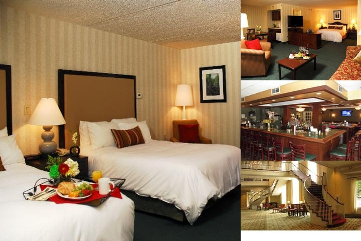 Radisson Hotel & Suites Chelmsford / Lowell photo collage