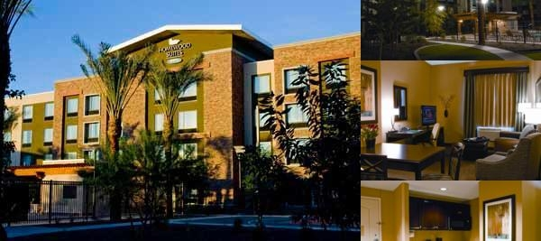 Homewood Suites by Hilton Chandler Fashion Center photo collage