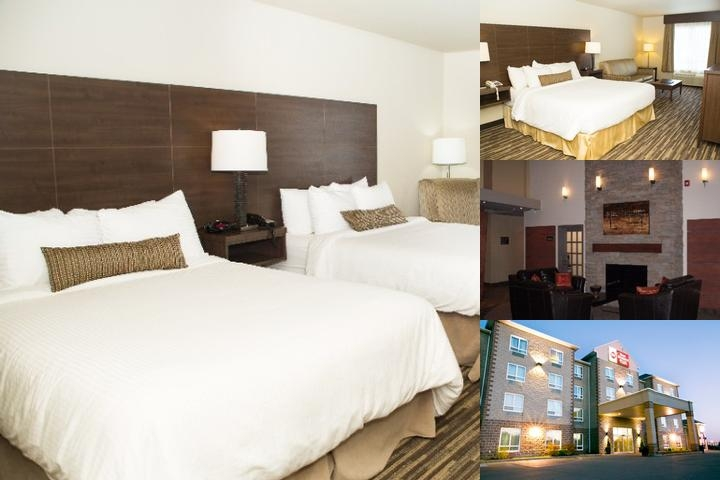 Best Western Plus Dartmouth Hotel & Suites photo collage