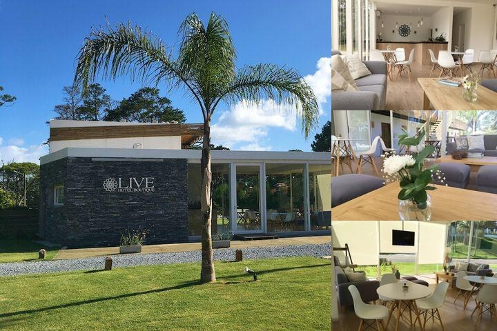 Live Hotel Boutique photo collage