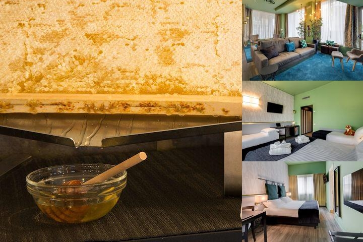 Best Western Plus Chc Florence photo collage