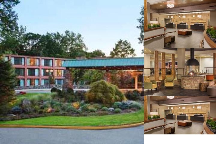 Hilton Westchester photo collage