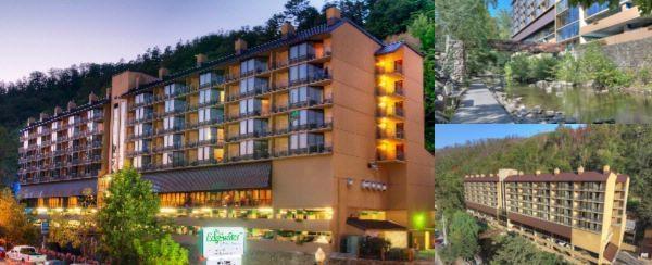 Gatlinburg Tn Hotels >> Edgewater Hotel Conference Center Gatlinburg Tn 402 River Rd 37738