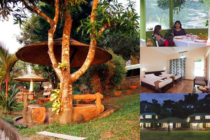 Elephantpass Ayurveda & Yoga Retreat photo collage