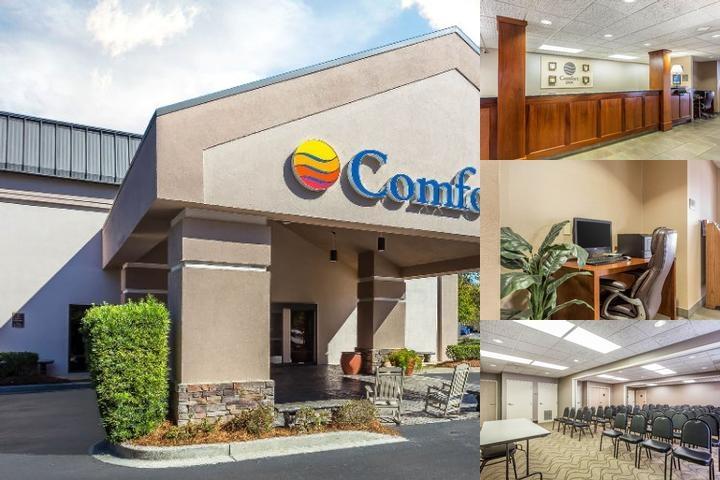 Comfort Inn Summerville Sc 1015 Jockey Court 29483