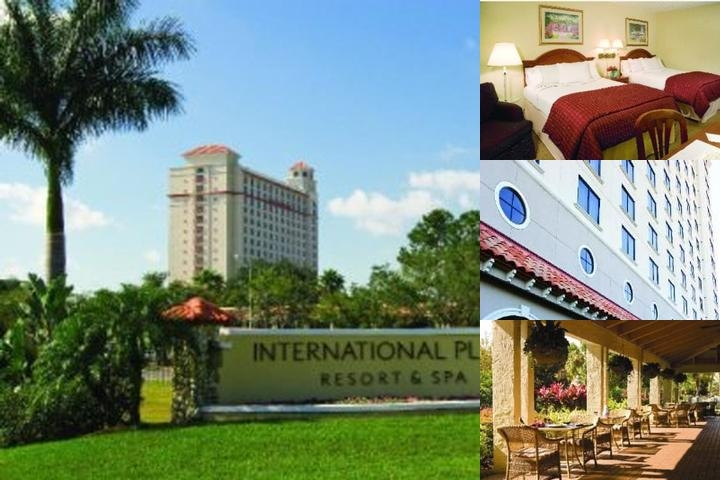 International Plaza Resort & Spa photo collage