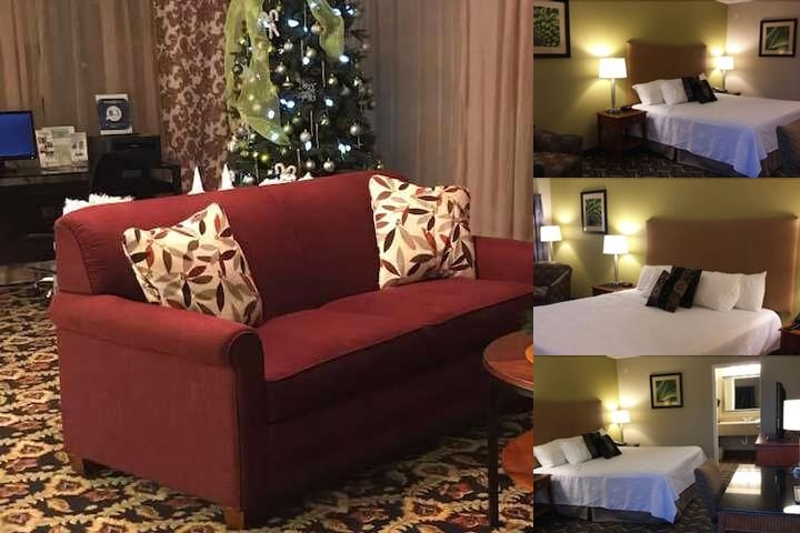 Wingfield Inn photo collage
