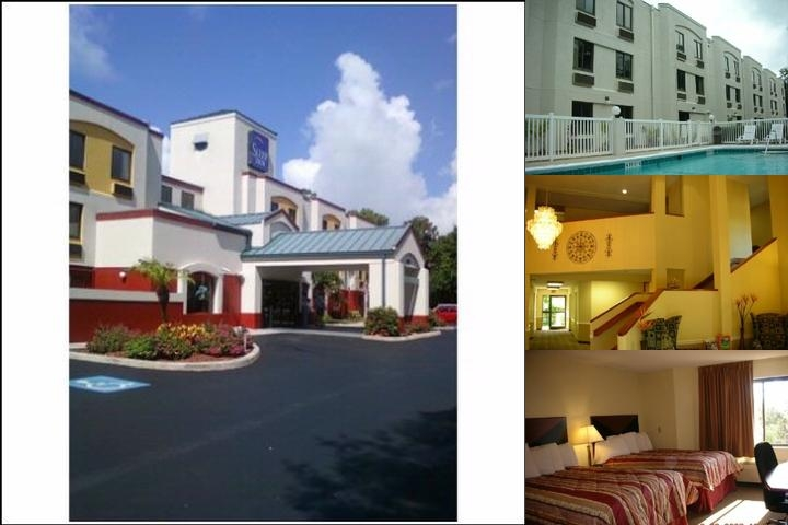 Sleep Inn Sarasota Airport photo collage