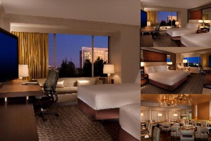 Hilton Mclean Tysons Corner photo collage