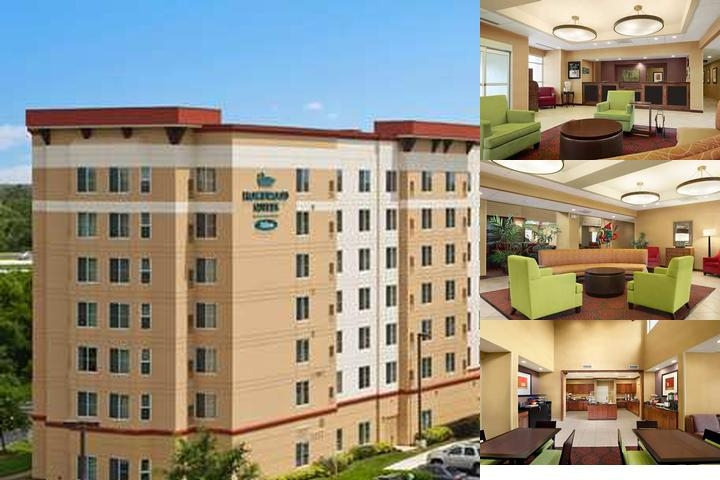 Homewood Suites by Hilton Tampa Brandon photo collage