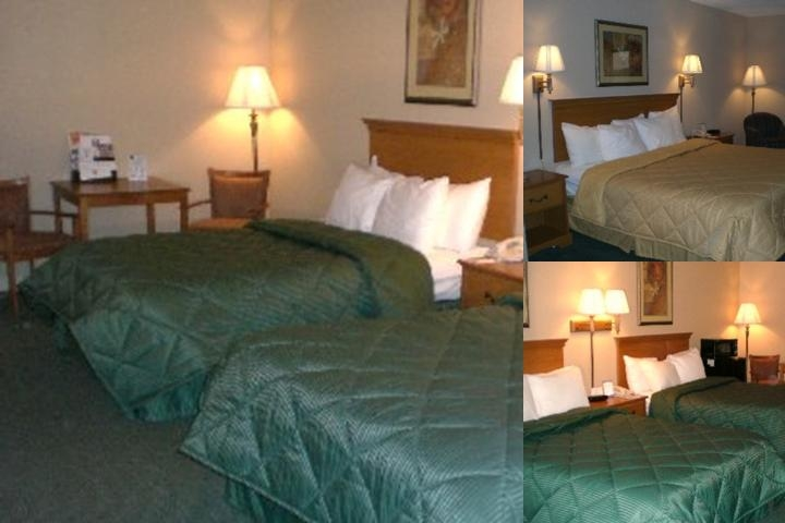 Comfort Inn Fiesta Park Area photo collage