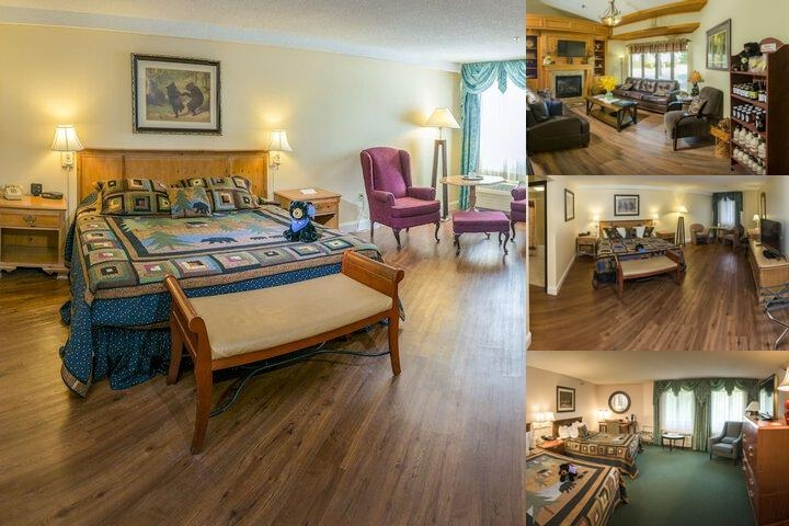 Black Bear Inn photo collage