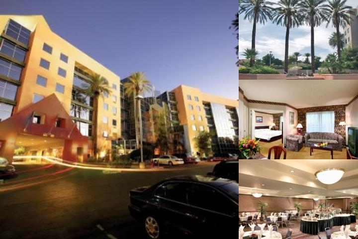 Atrium Suites Hotel photo collage