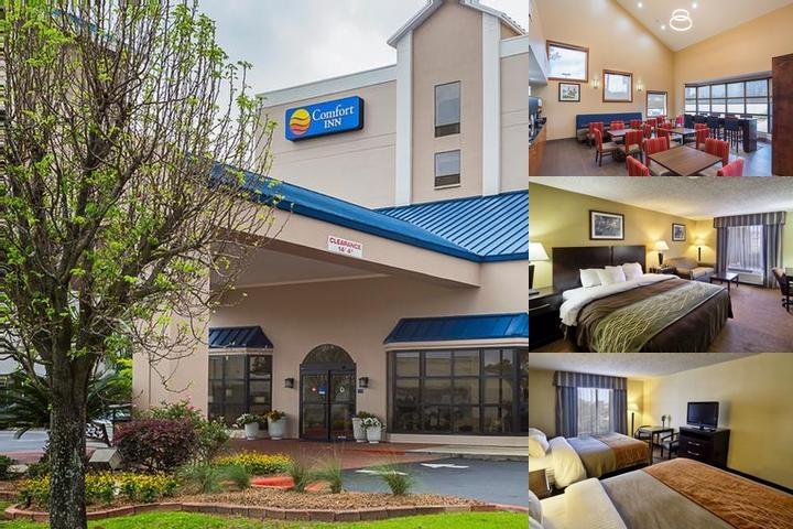 Comfort Inn Baton Rouge La 4924 Constitution 70808