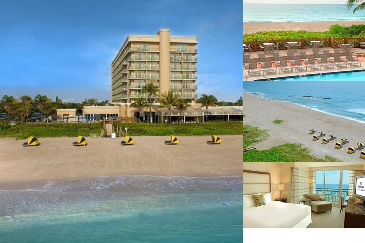 Hilton Singer Island photo collage