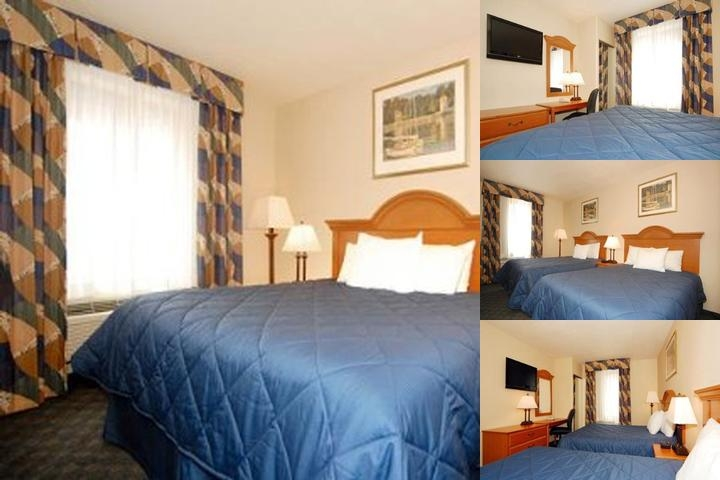 Comfort Inn Jfk photo collage