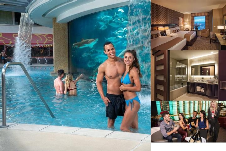 Golden Nugget Las Vegas photo collage