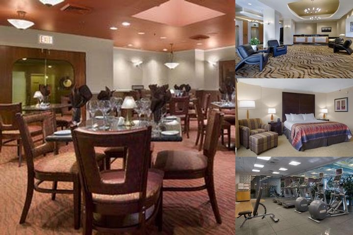 Hilton Oak Lawn photo collage