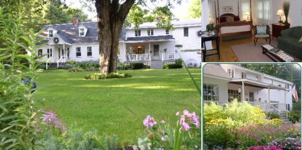Buttonwood Inn on Mount Surprise photo collage