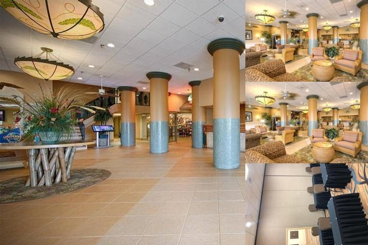Best Western Orlando Gateway Hotel photo collage