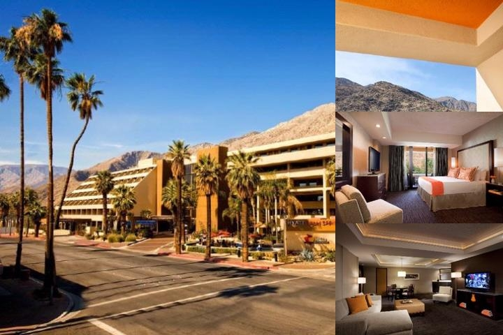 Hyatt Palm Springs photo collage