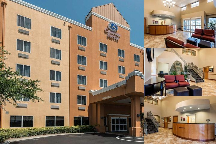 Comfort Suites Near Raymond James Stadium photo collage
