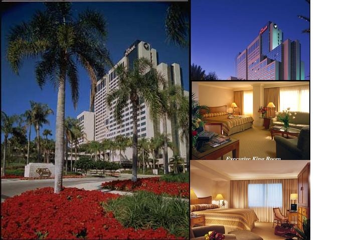 Hyatt Regency Orlando (Formerly Peabody Orlando) photo collage