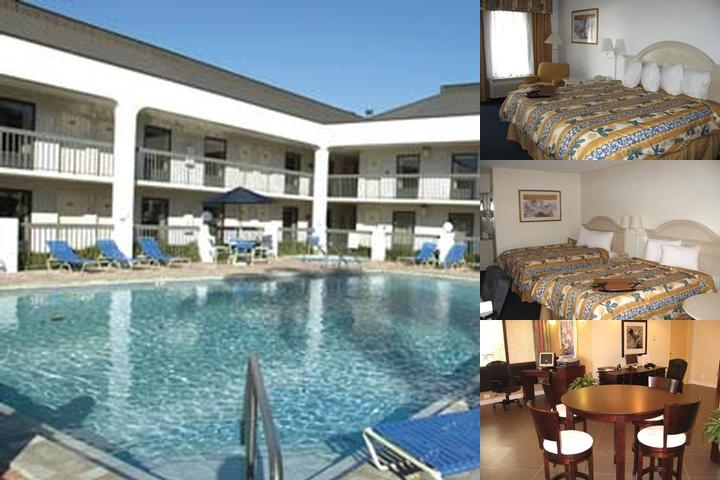 Quality Inn & Suites St. Petersburg Clearwater Airport photo collage