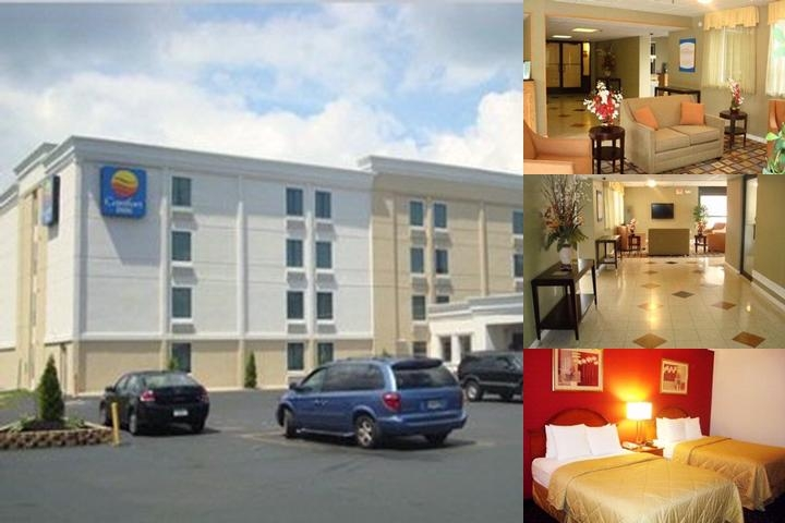Comfort Inn Easton photo collage